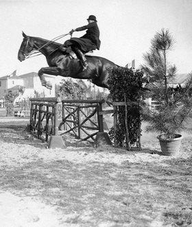 Pferd im Sprung. Mrs. Vera Bate mit Pferd Roccabruna. Photographie, um 1930. San Remo