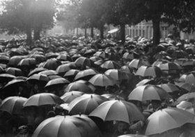 Ein Meer von Regenschirmen in Paris. Frankreich. Photographie