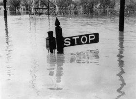 Der Ohio-Strom ist über die Ufer getreten. Nur ein Verkehrszeichen ragt aus dem Wasser. Photographie