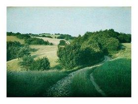 Franz Kaiser: Autochrome um 1908, Landschaft im Wienerwald