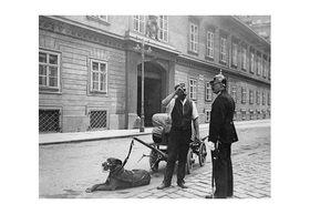 Emil Mayer: Der Hund als Zugtier, vor dem Palais Pallavicini, Josefsplatz in Wien