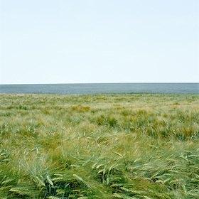 Jana Hiller: Landschaft III