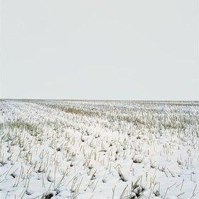 Jana Hiller: Landschaft V