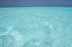 Michael Reusse: Karibik, Niederländische Antillen, Bonaire