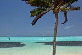 Michael Reusse: Karibik, Niederländische Antillen, Bonaire, Windsurfen