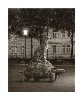 Quint Buchholz: Sommernacht