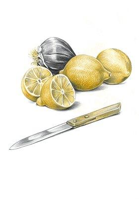 Reinhard Michl: Stilleben mit Zitronen