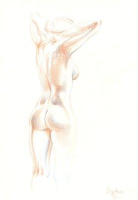Reinhard Michl: Zeichnung, Akt Sophie