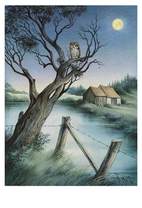 Reinhard Michl: Mondnacht