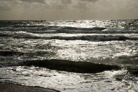 Renate Neder: Meer