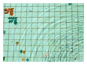 Suse G�llert: Pool
