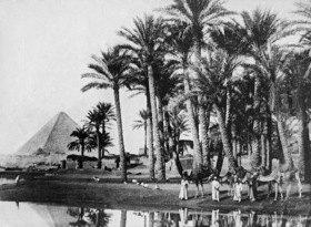 Gebrüder Haeckel: Aegypten: Landschaft, im Hintergrund eine Pyramide, um 1910