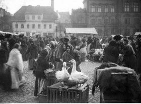 Gänseweiber auf dem Wochenmarkt in Posen